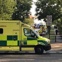 Appeal after fatal collision in Broad Walk, Kidbrooke