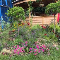 How do Greenwich gardens grow?