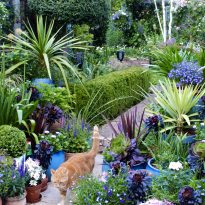 Searching for the best gardeners in Greenwich!